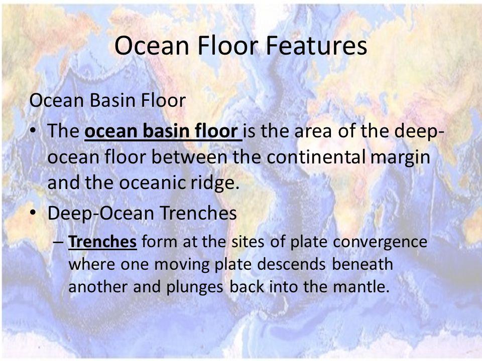 Ocean Floor Features Ocean Basin Floor The ocean basin floor is the area of the deep- ocean floor between the continental margin and the oceanic ridge.