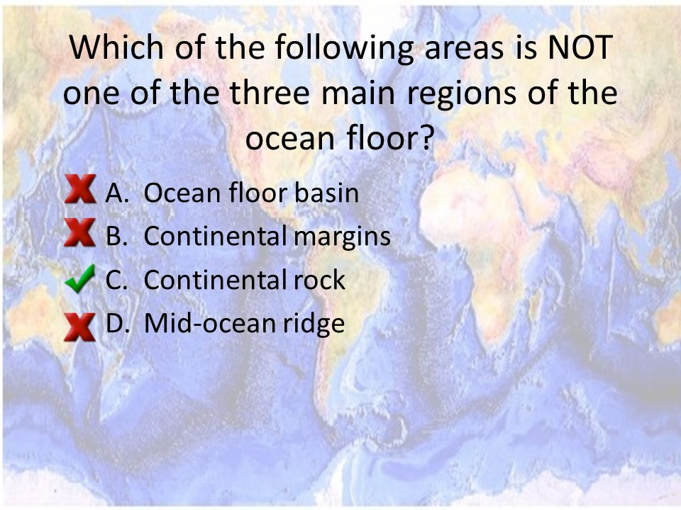 Which of the following areas is NOT one of the three main regions of the ocean floor.