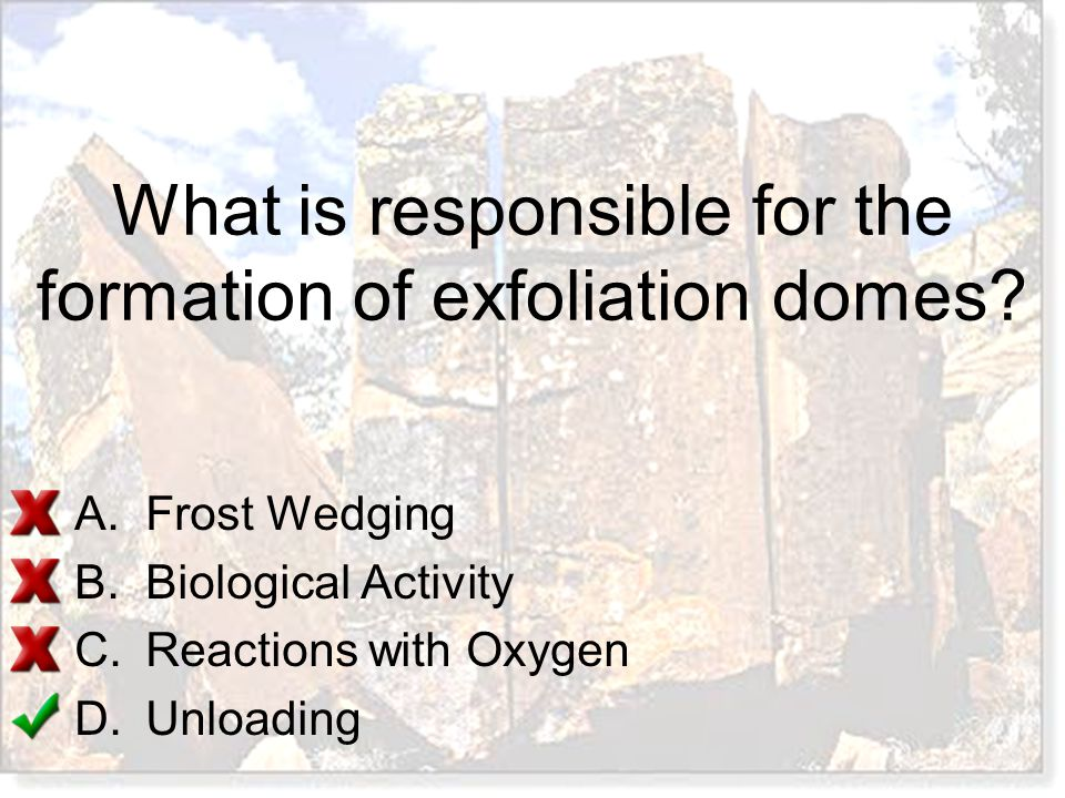 What is responsible for the formation of exfoliation domes? A.Frost Wedging B.Biological Activity C.Reactions with Oxygen D.Unloading