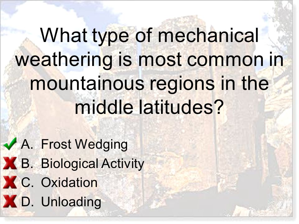 What type of mechanical weathering is most common in mountainous regions in the middle latitudes? A.Frost Wedging B.Biological Activity C.Oxidation D.