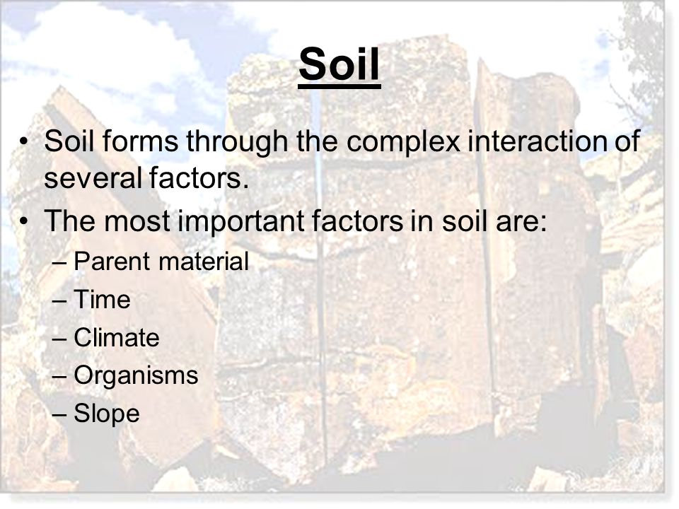 Soil Soil forms through the complex interaction of several factors. The most important factors in soil are: –Parent material –Time –Climate –Organisms
