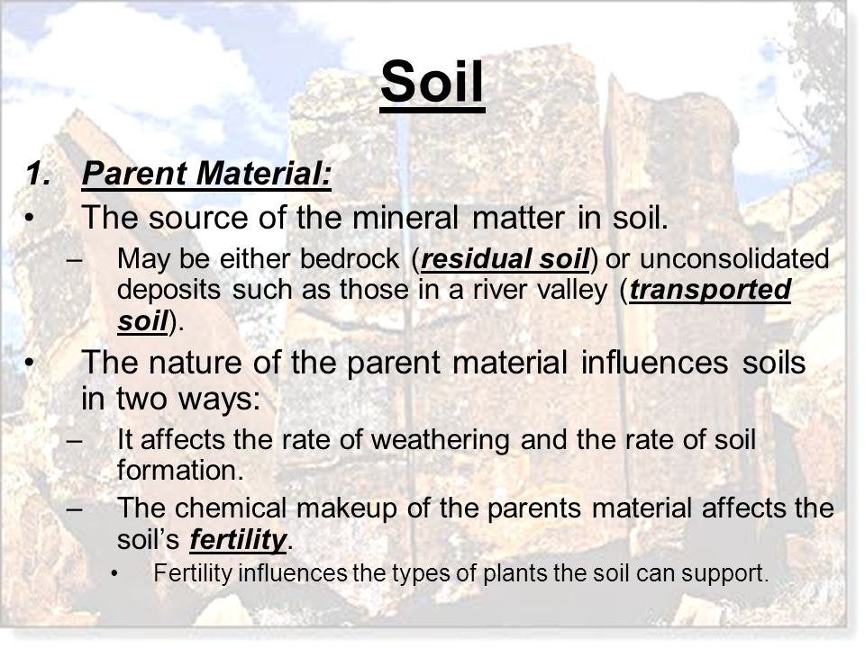 Soil 1.Parent Material: The source of the mineral matter in soil. –May be either bedrock (residual soil) or unconsolidated deposits such as those in a