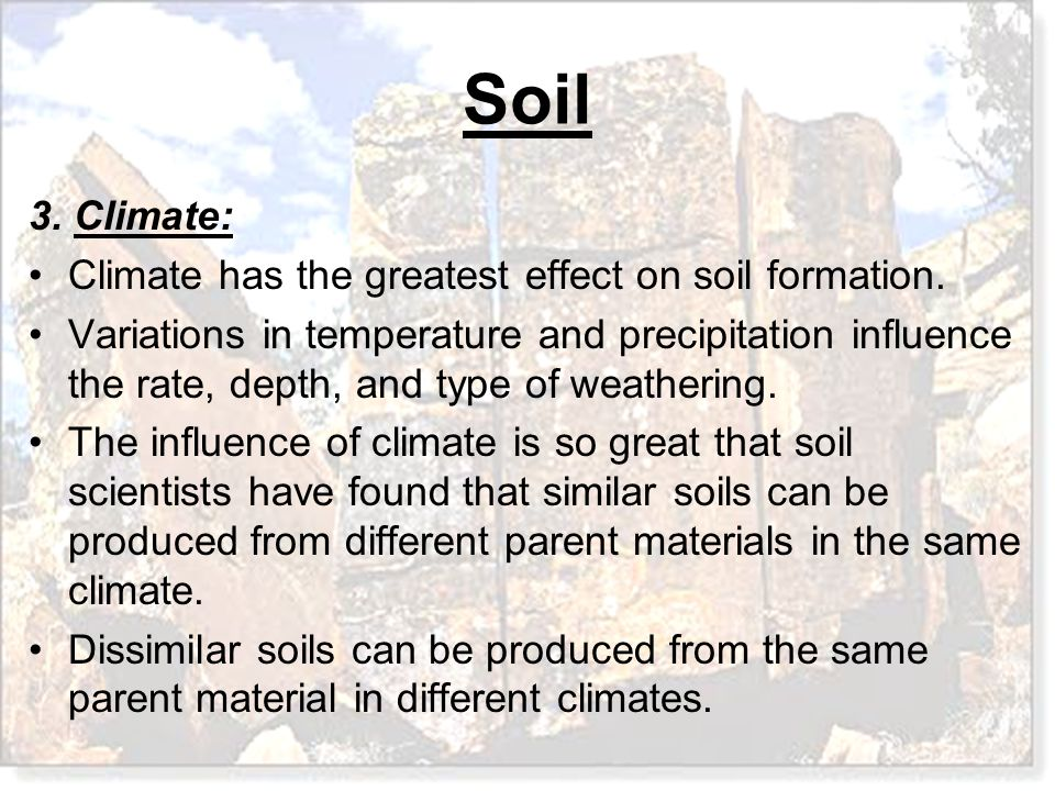 Soil 3. Climate: Climate has the greatest effect on soil formation. Variations in temperature and precipitation influence the rate, depth, and type of