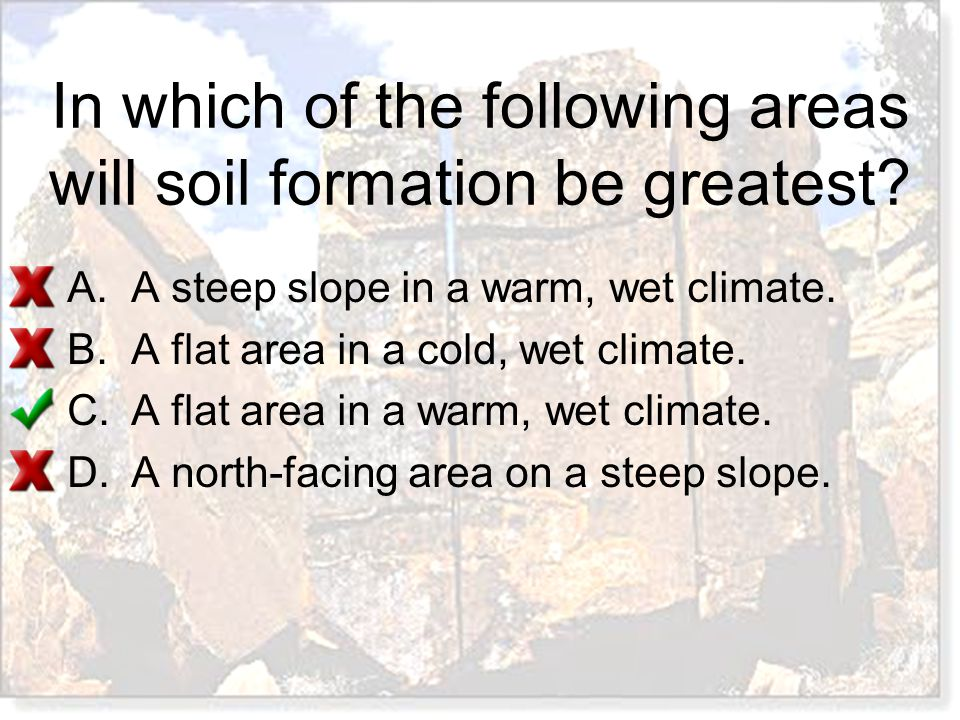 In which of the following areas will soil formation be greatest? A.A steep slope in a warm, wet climate. B.A flat area in a cold, wet climate. C.A fla