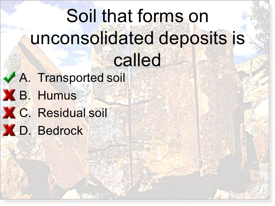 Soil that forms on unconsolidated deposits is called A.Transported soil B.Humus C.Residual soil D.Bedrock