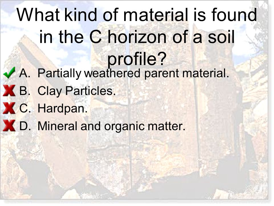 What kind of material is found in the C horizon of a soil profile? A.Partially weathered parent material. B.Clay Particles. C.Hardpan. D.Mineral and o