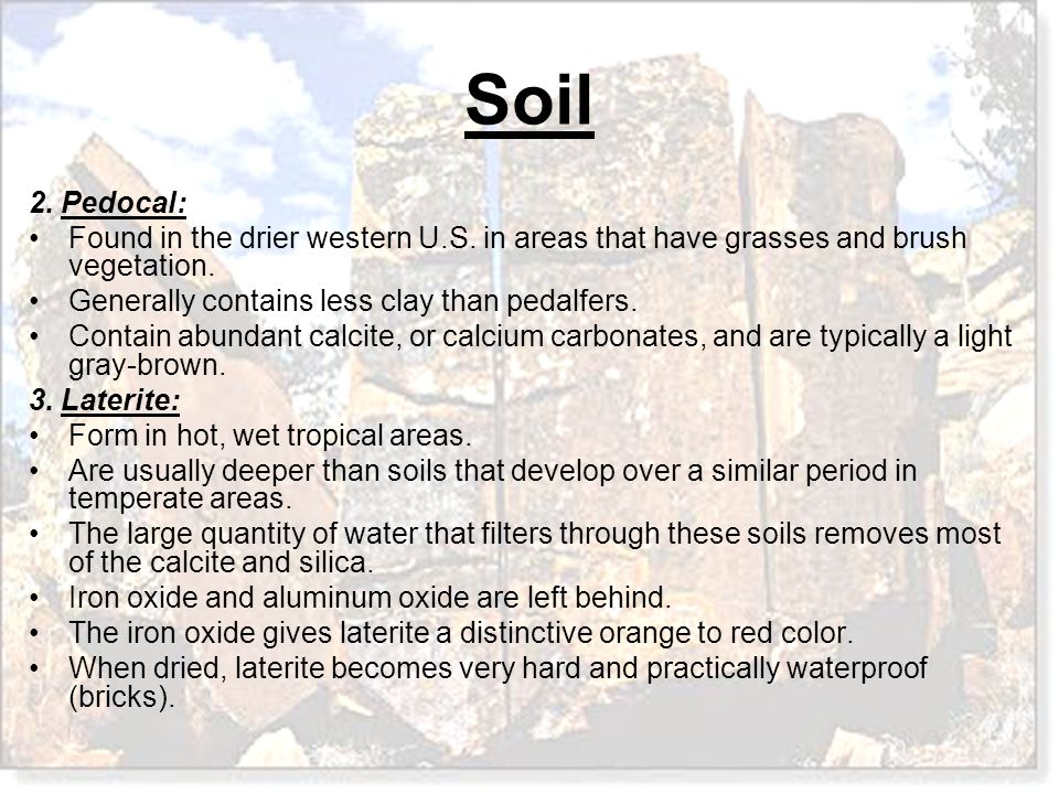 Soil 2. Pedocal: Found in the drier western U.S. in areas that have grasses and brush vegetation. Generally contains less clay than pedalfers. Contain