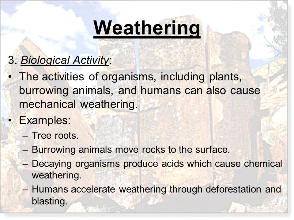 Whenever the characteristics and chemical composition of weathered materials have been altered, they have undergone A.Chemical weathering.