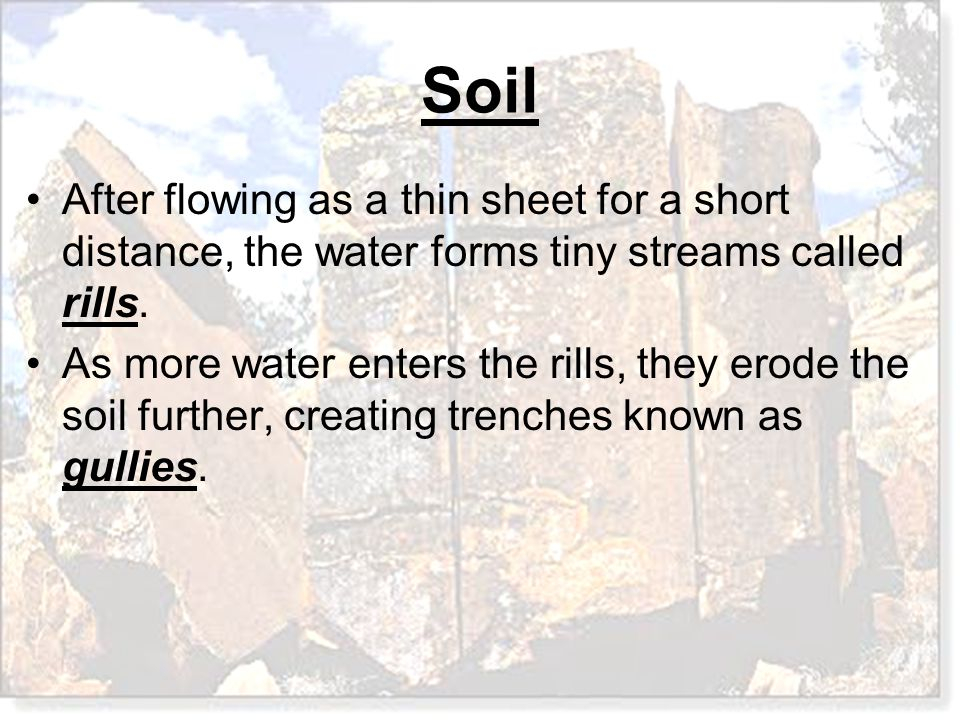 After flowing as a thin sheet for a short distance, the water forms tiny streams called rills. As more water enters the rills, they erode the soil fur