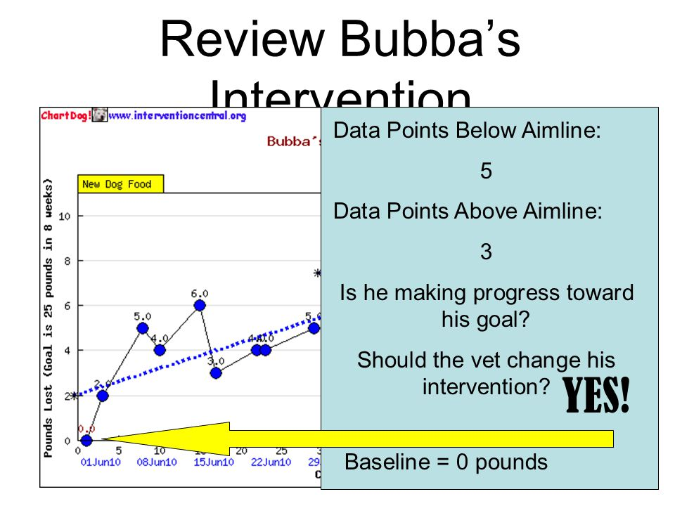 Bubba's Progress Monitoring Measuring Tool: Bubba's progress will be measured by weighing him 2 times a week using the Dog-A-Rama scale to determine his pounds lost per week.