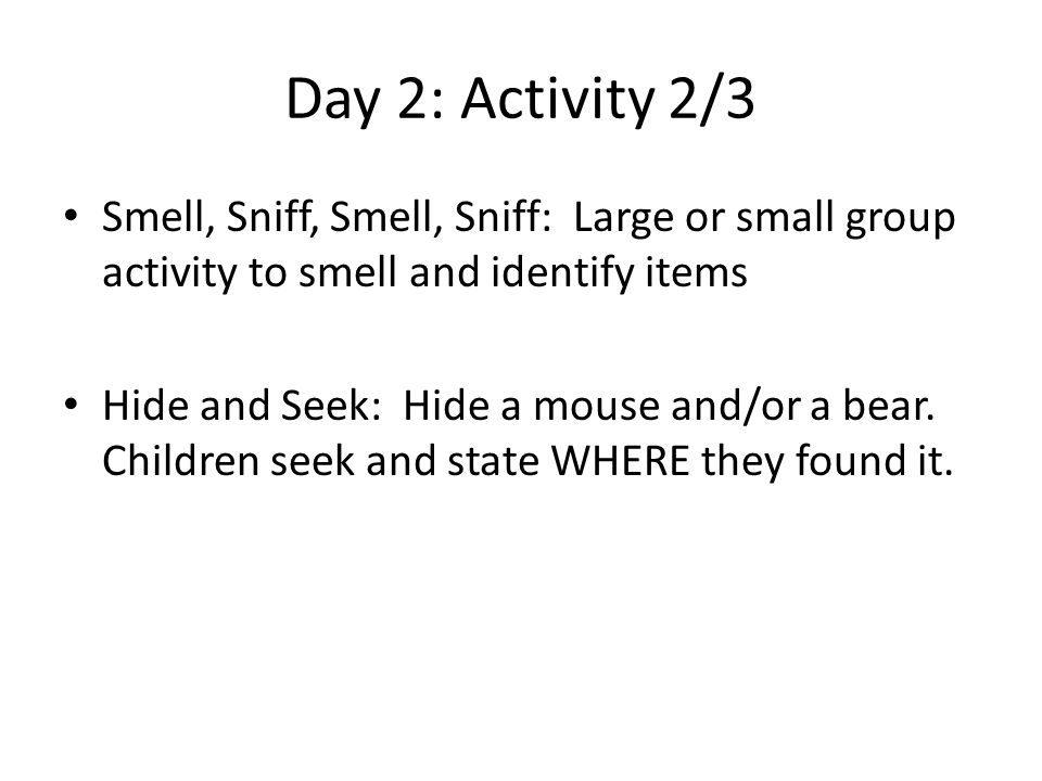 Day 2: Activity 2/3 Smell, Sniff, Smell, Sniff: Large or small group activity to smell and identify items Hide and Seek: Hide a mouse and/or a bear.