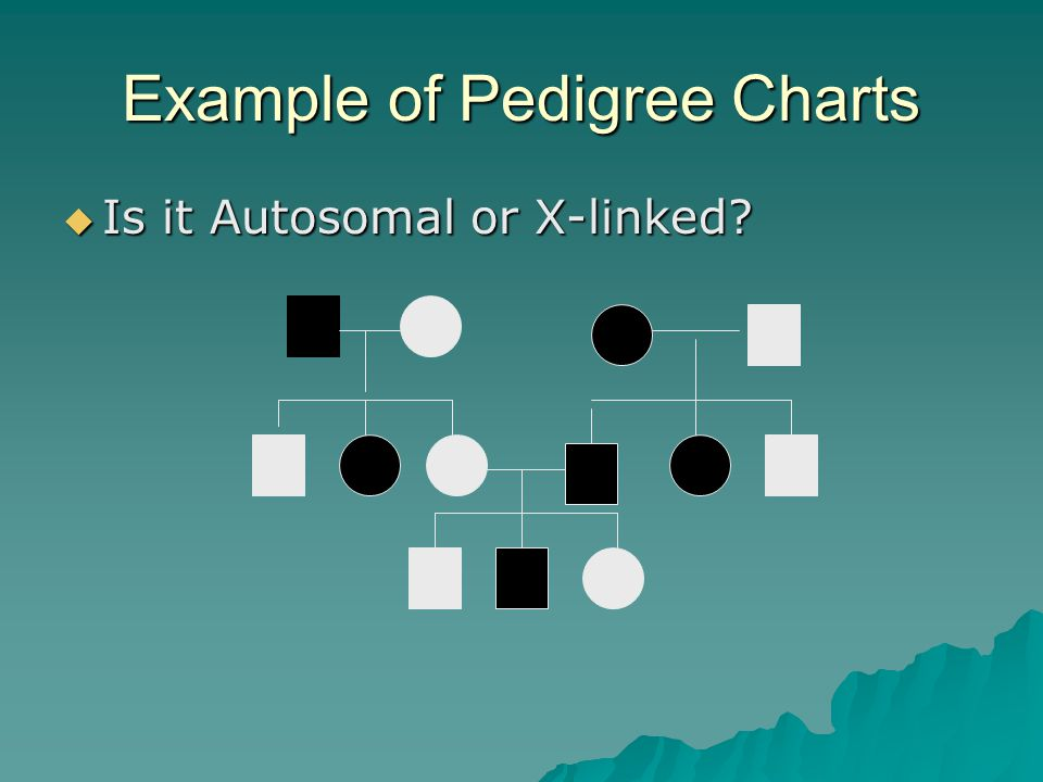 Interpreting a Pedigree Chart 1. Determine if the pedigree chart shows an autosomal or X-linked disease. –If most of the males in the pedigree are aff