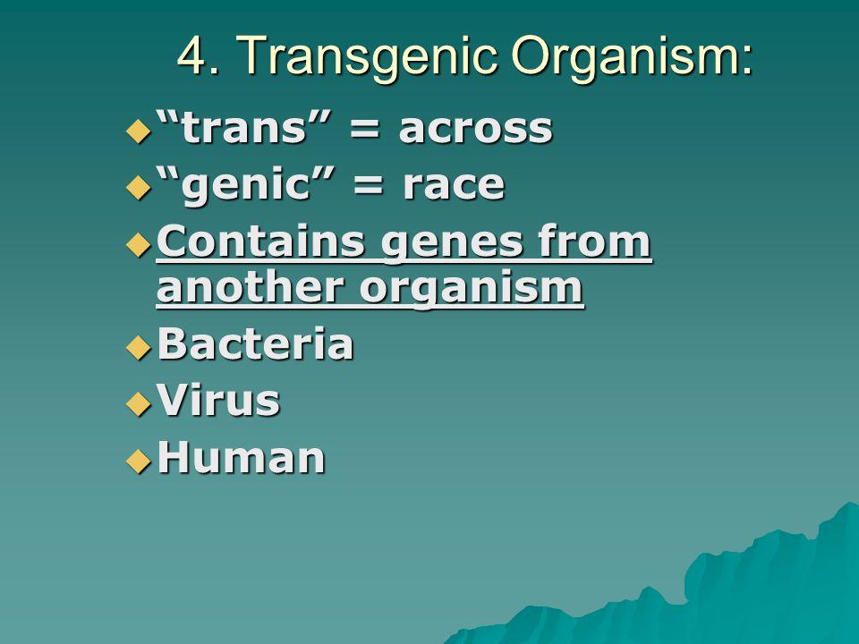 Genetic Engineering of Insulin Human DNA cut out Human DNA put into bacteria DNA Bacteria DNA is opened up Many Bacteria Grow human insulin