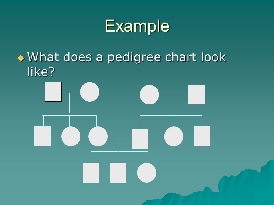 Summary  Pedigrees are family trees that explain your genetic history.