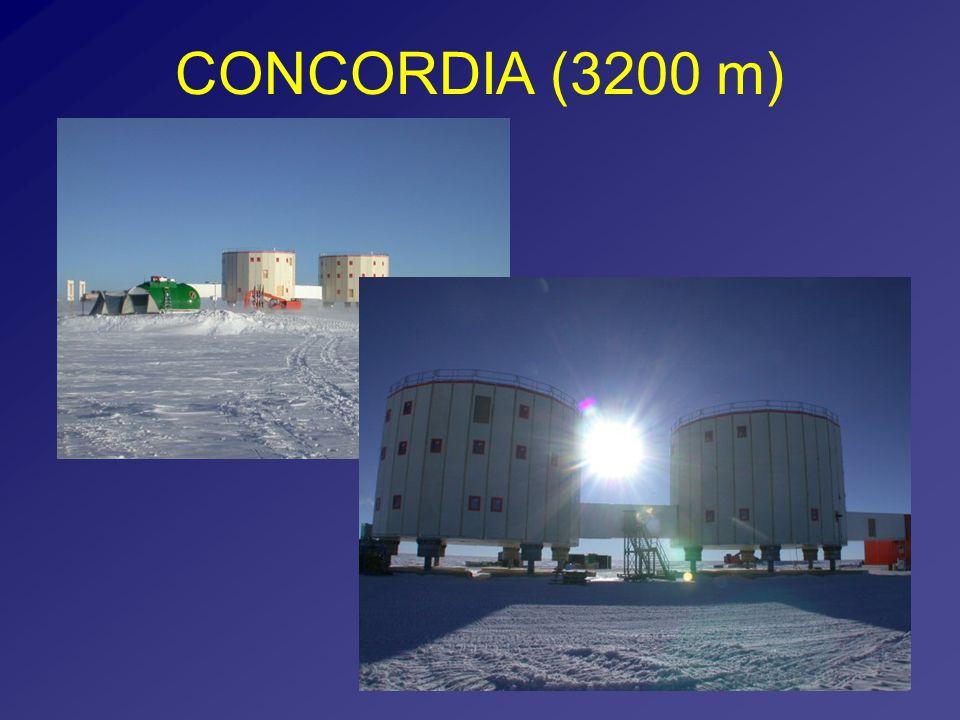 CONCORDIA (3200 m)