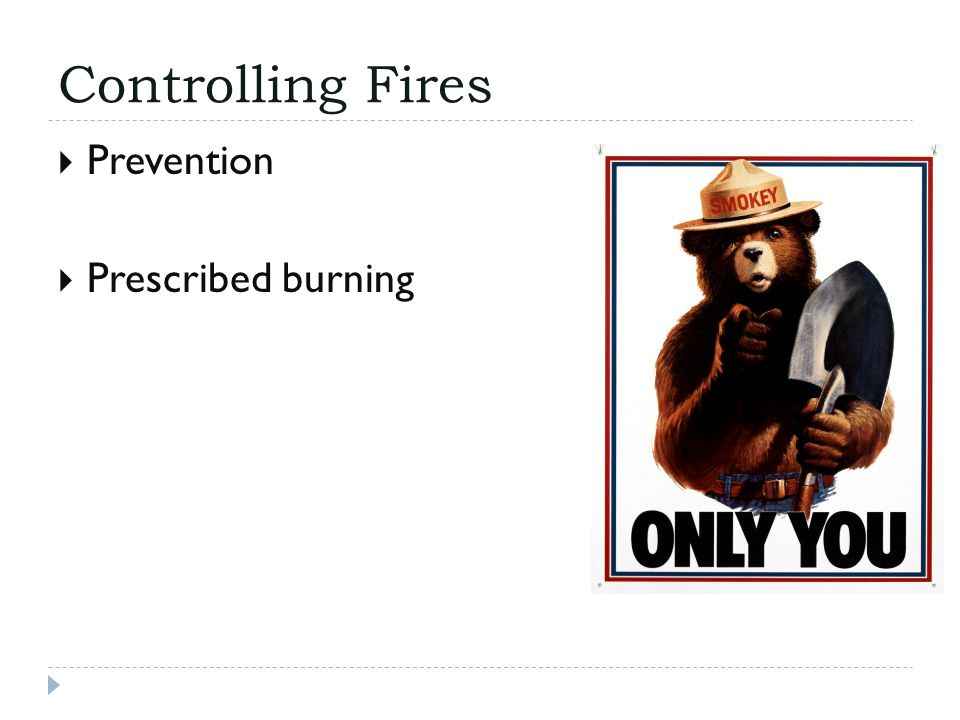 Controlling Fires  Prevention  Prescribed burning