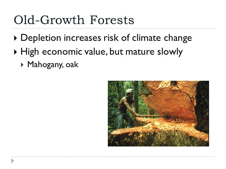 Deforestation  Natural causes  Human reasons