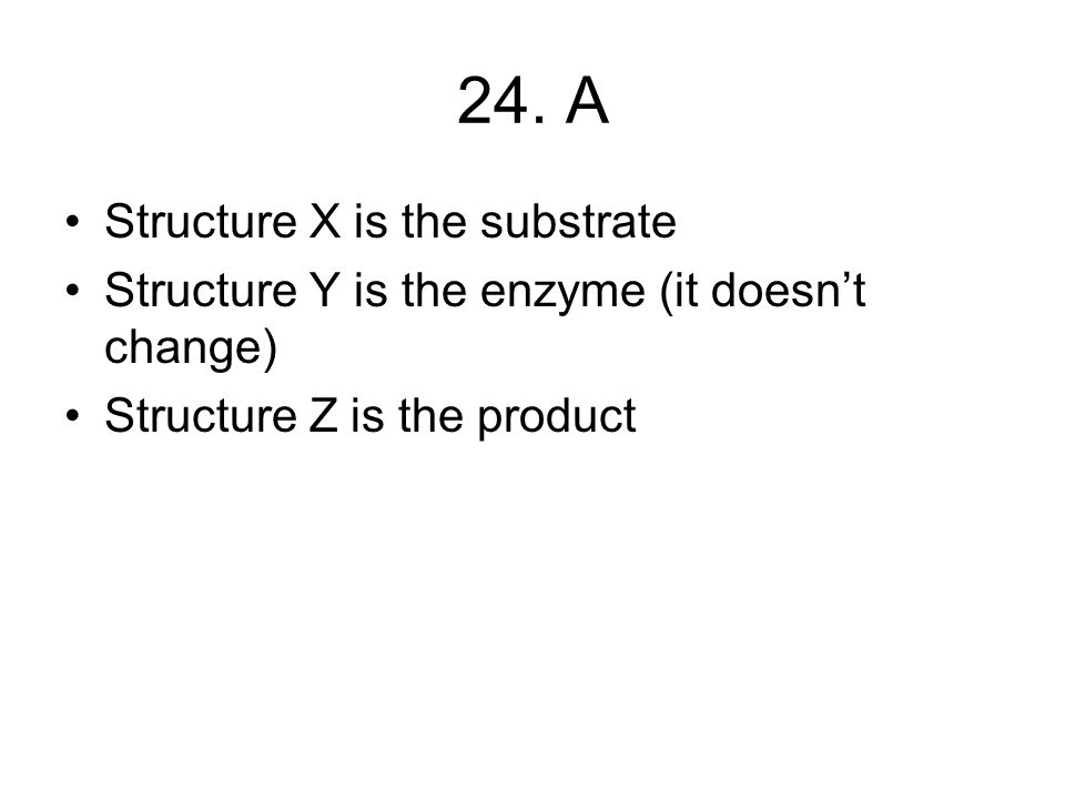 24. A Structure X is the substrate Structure Y is the enzyme (it doesn't change) Structure Z is the product