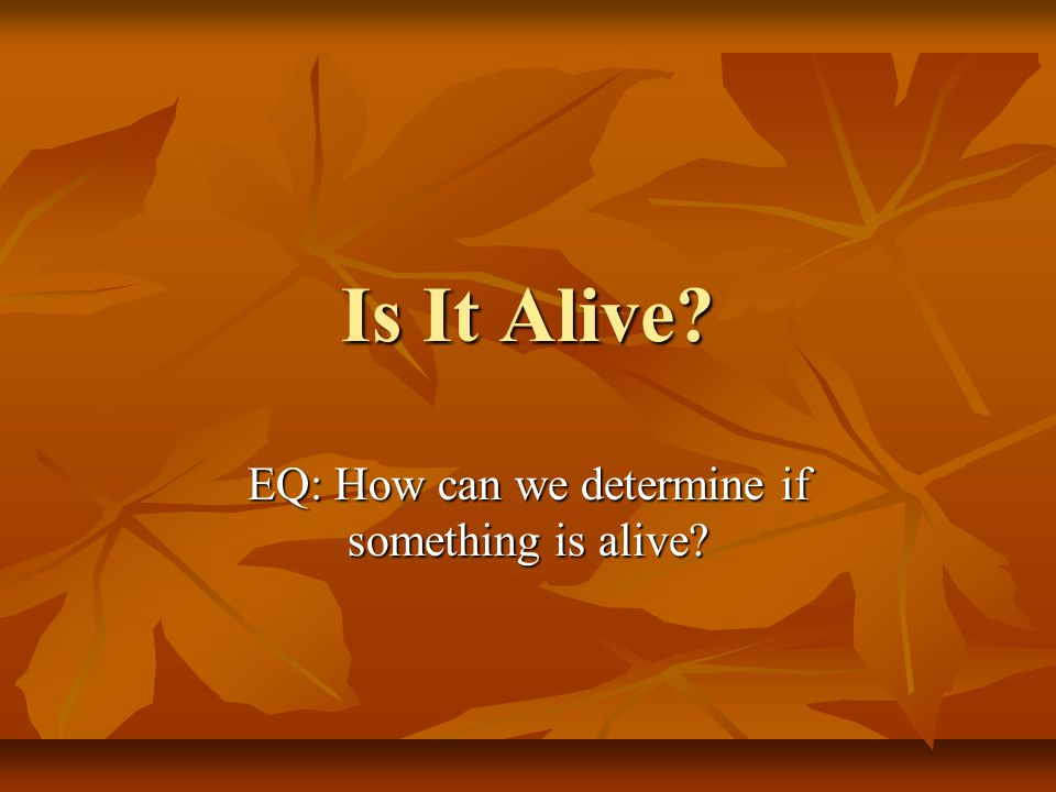 Is It Alive EQ: How can we determine if something is alive