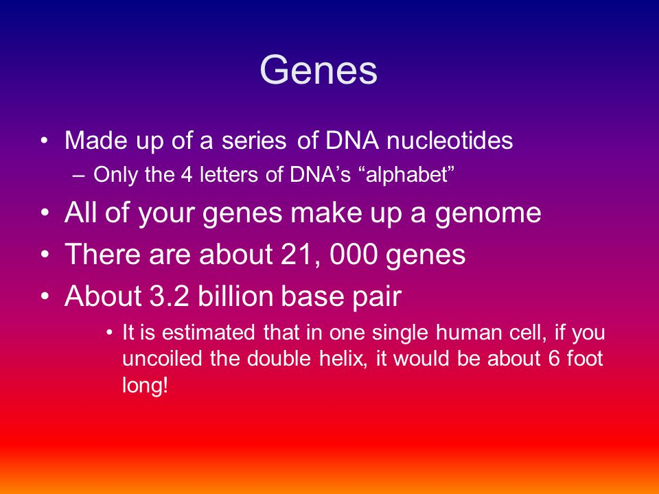 """Genes Made up of a series of DNA nucleotides –Only the 4 letters of DNA's """"alphabet"""" All of your genes make up a genome There are about 21, 000 genes"""