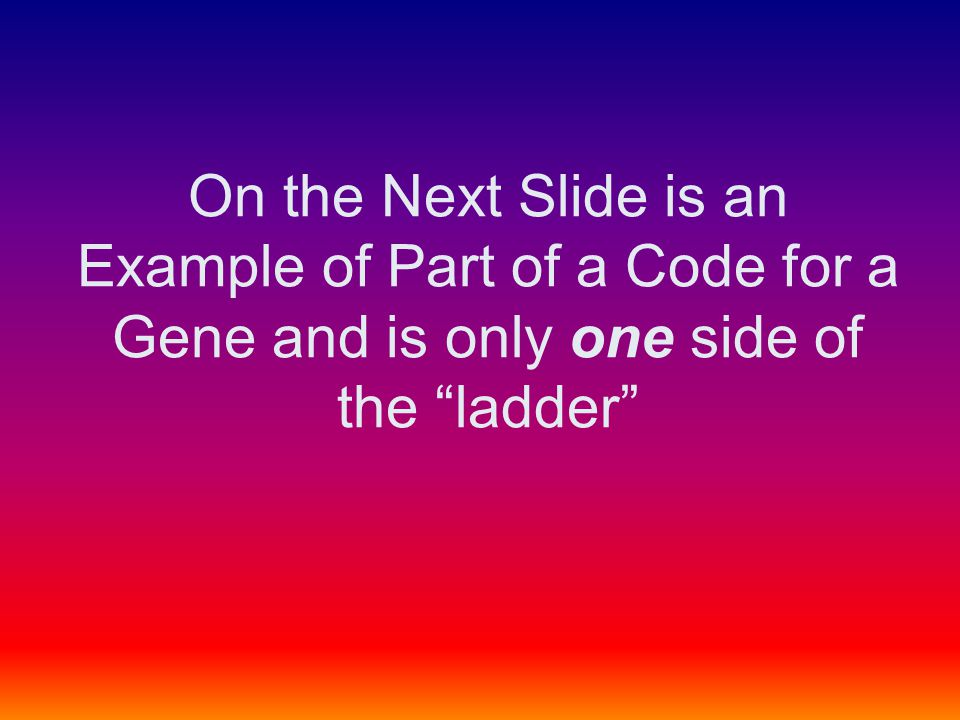 """On the Next Slide is an Example of Part of a Code for a Gene and is only one side of the """"ladder"""""""