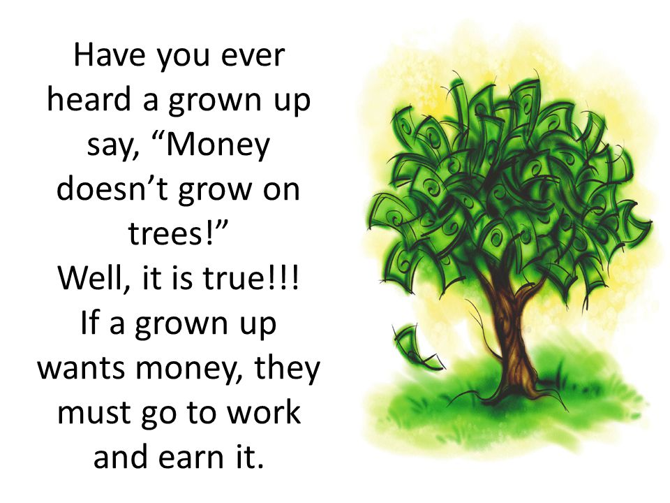"""Have you ever heard a grown up say, """"Money doesn't grow on trees!"""" Well, it is true!!! If a grown up wants money, they must go to work and earn it."""