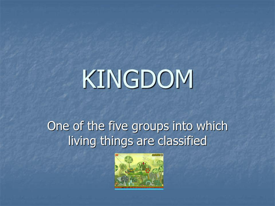KINGDOM One of the five groups into which living things are classified