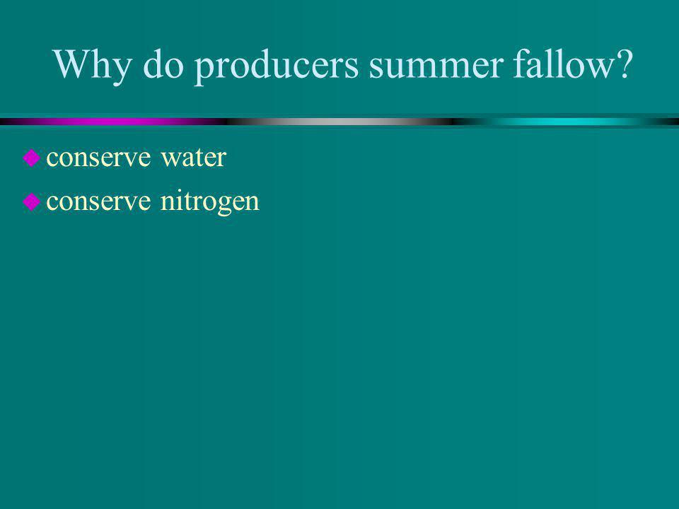 Why do producers summer fallow? u conserve water u conserve nitrogen