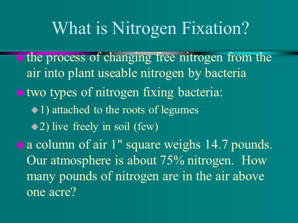 What is Nitrogen Fixation.