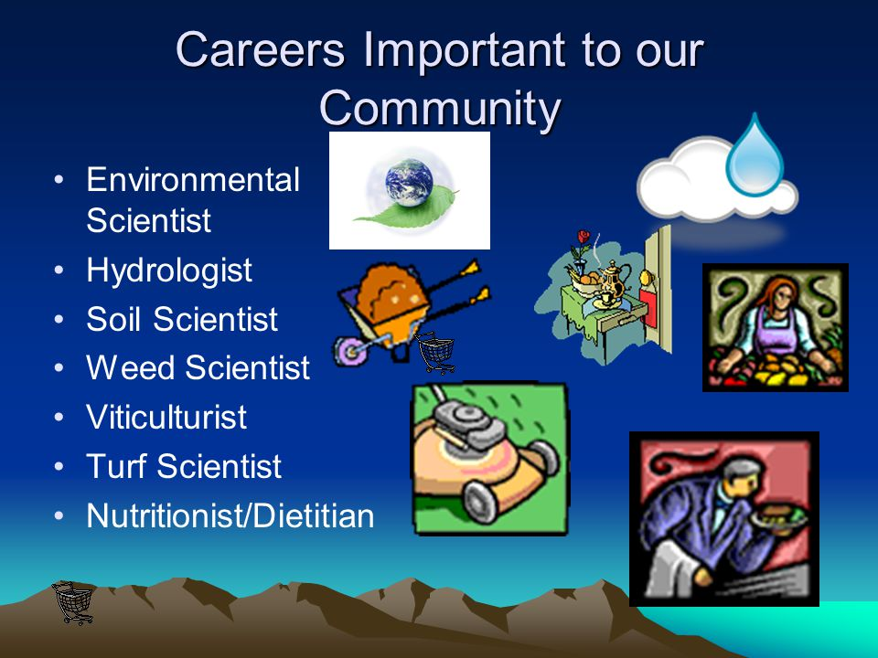 Animal Nutritionist Animal nutritionists formulate diets for food, companion, and zoo animals. They work with mammals, birds, and fish. The diets they