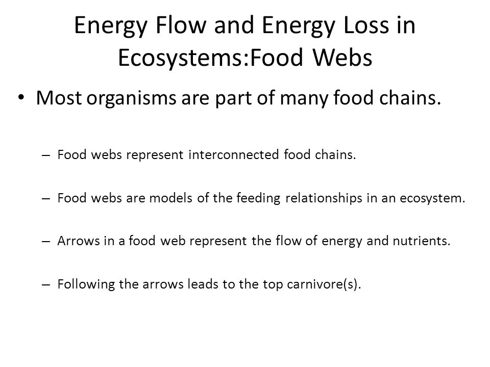 Energy Flow and Energy Loss in Ecosystems:Food Webs Most organisms are part of many food chains. – Food webs represent interconnected food chains. – F