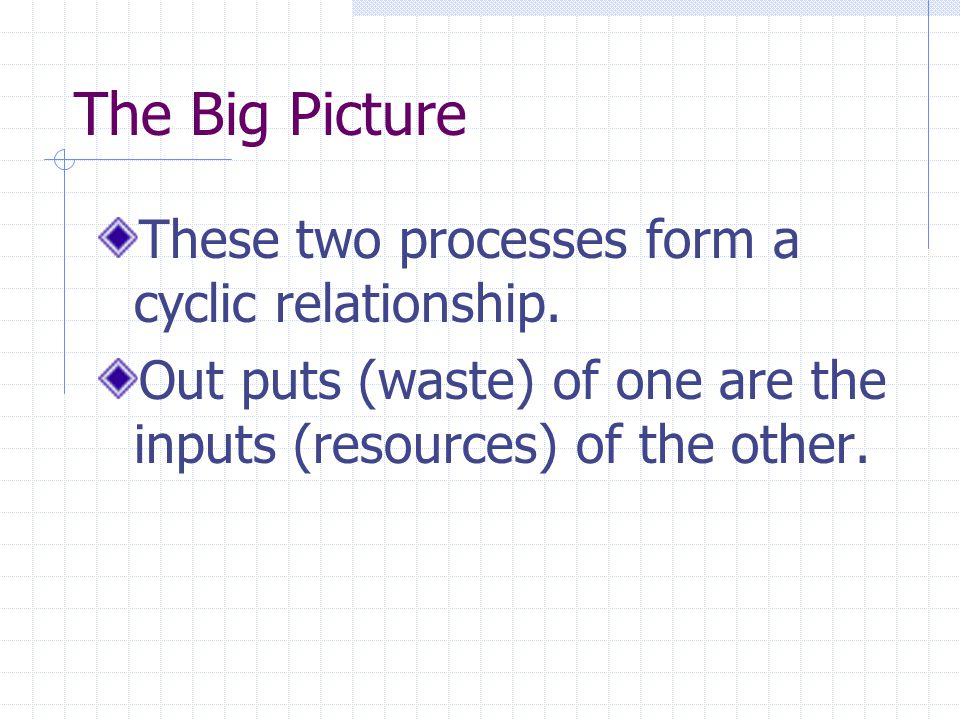 The Big Picture These two processes form a cyclic relationship.