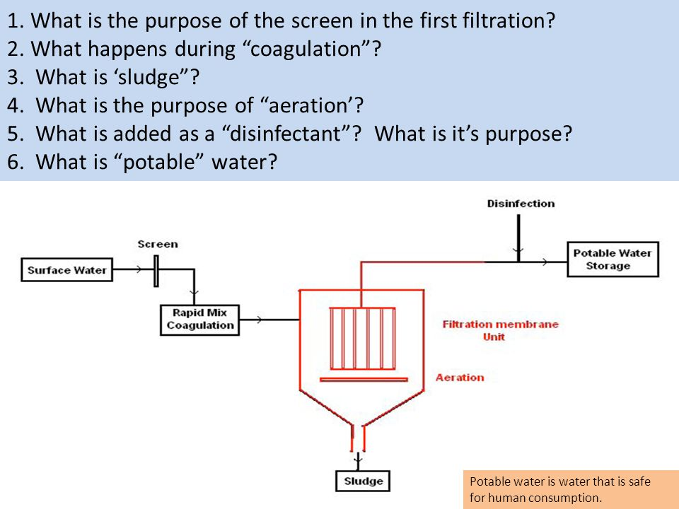 "1. What is the purpose of the screen in the first filtration? 2. What happens during ""coagulation""? 3. What is 'sludge""? 4. What is the purpose of ""ae"