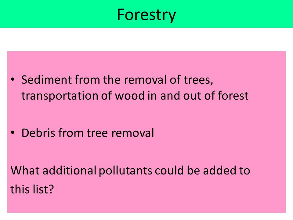 Forestry Sediment from the removal of trees, transportation of wood in and out of forest Debris from tree removal What additional pollutants could be