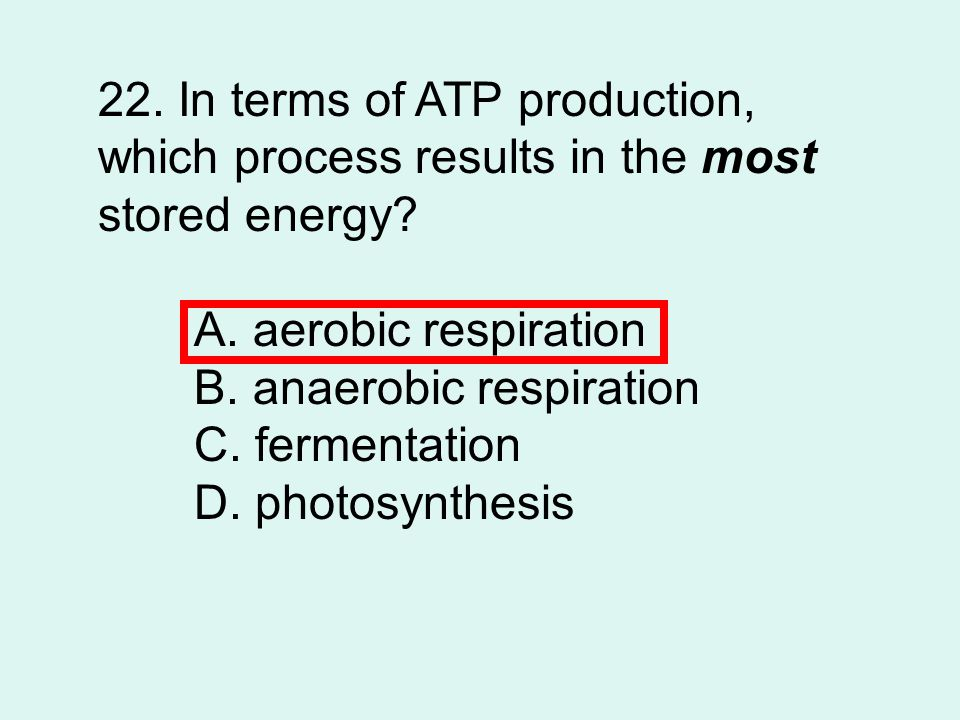 22.In terms of ATP production, which process results in the most stored energy.