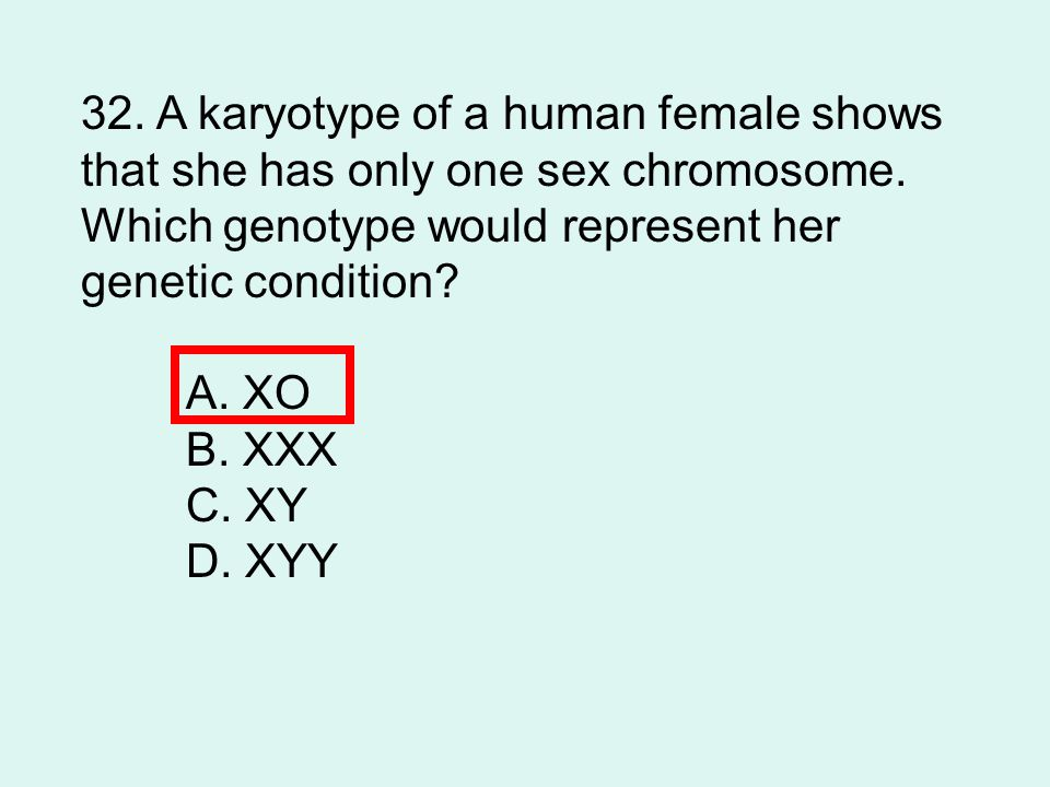 32.A karyotype of a human female shows that she has only one sex chromosome.