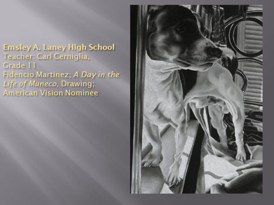 Emsley A. Laney High School Teacher: Carl Cerniglia, Grade 11 Fidencio Martinez; A Day in the Life of Muneco, Drawing; American Vision Nominee