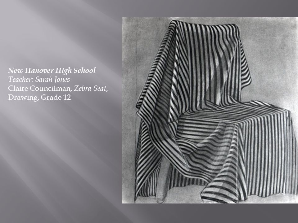 New Hanover High School Teacher: Sarah Jones Claire Councilman, Zebra Seat, Drawing, Grade 12