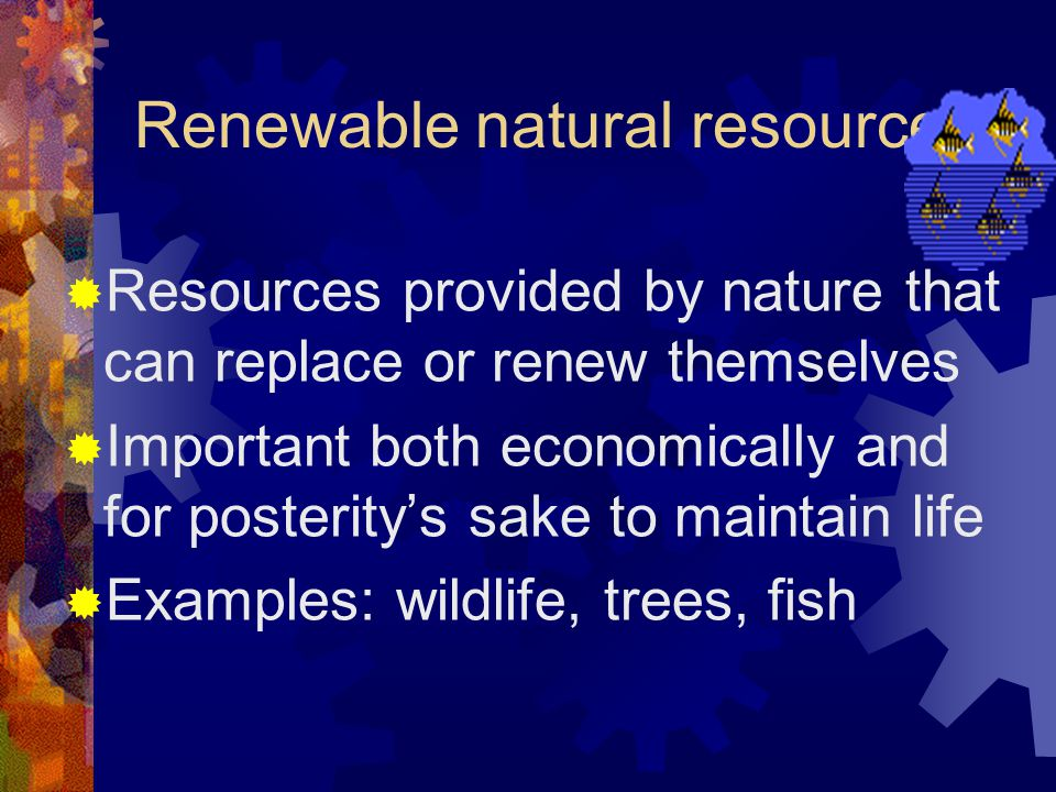 Renewable natural resources  Resources provided by nature that can replace or renew themselves  Important both economically and for posterity's sake to maintain life  Examples: wildlife, trees, fish