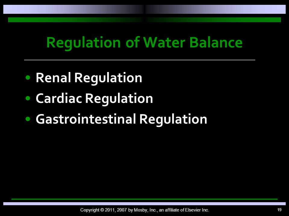 19 Regulation of Water Balance Renal Regulation Cardiac Regulation Gastrointestinal Regulation Copyright © 2011, 2007 by Mosby, Inc., an affiliate of