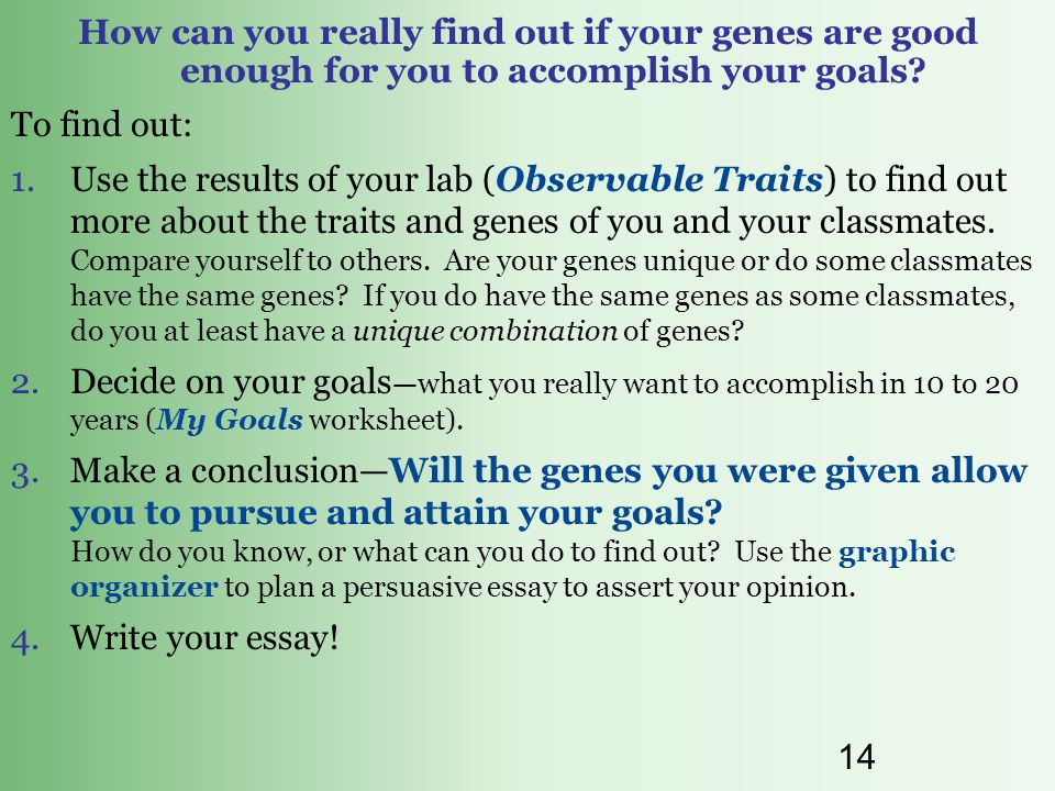 13 Do your genes determine your success. Explain.