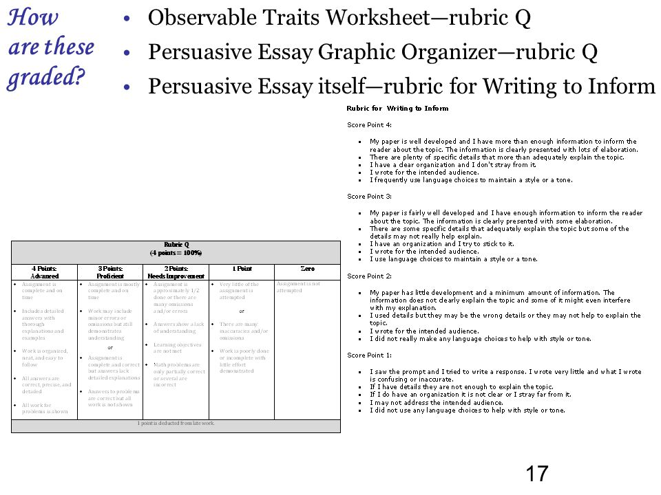 16 Observable Traits worksheet WITH CLASS DATA, also a copy of the graphic organizer