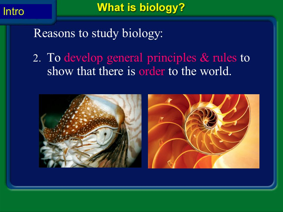 Unit Overview – pages 142-143 1.To study the variety of living things. Reasons to study biology: Life on Earth includes not only the common organisms