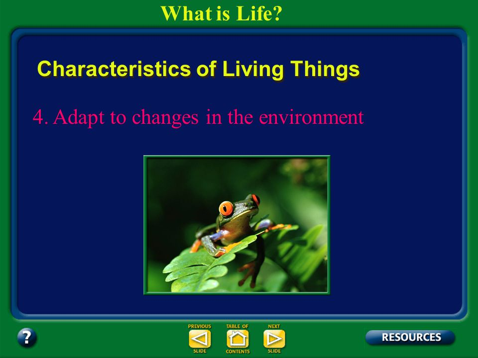 Section 1.1 Summary – pages 3-10 All of the changes that take place during the life of an organism are known as its development. Living things change
