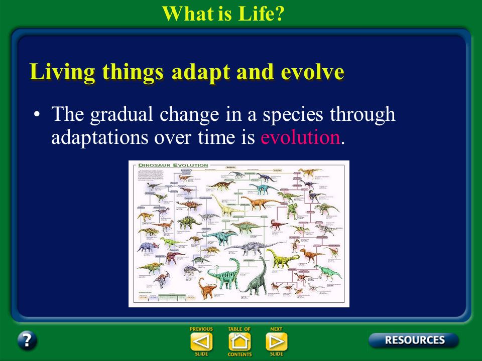 Section 1.1 Summary – pages 3-10 Any structure, behavior, or internal process that enables an organism to respond to survive in it's environment is ca