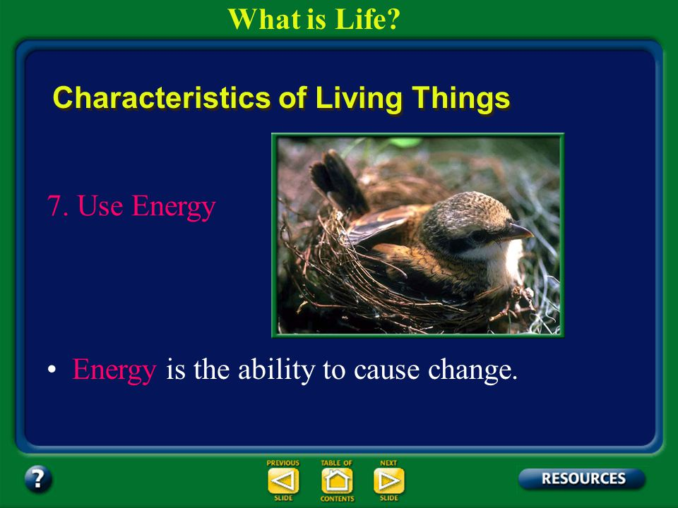 Section 1.1 Summary – pages 3-10 6. Maintain Homeostasis Characteristics of Living Things Regulation of an organism's internal environment to maintain
