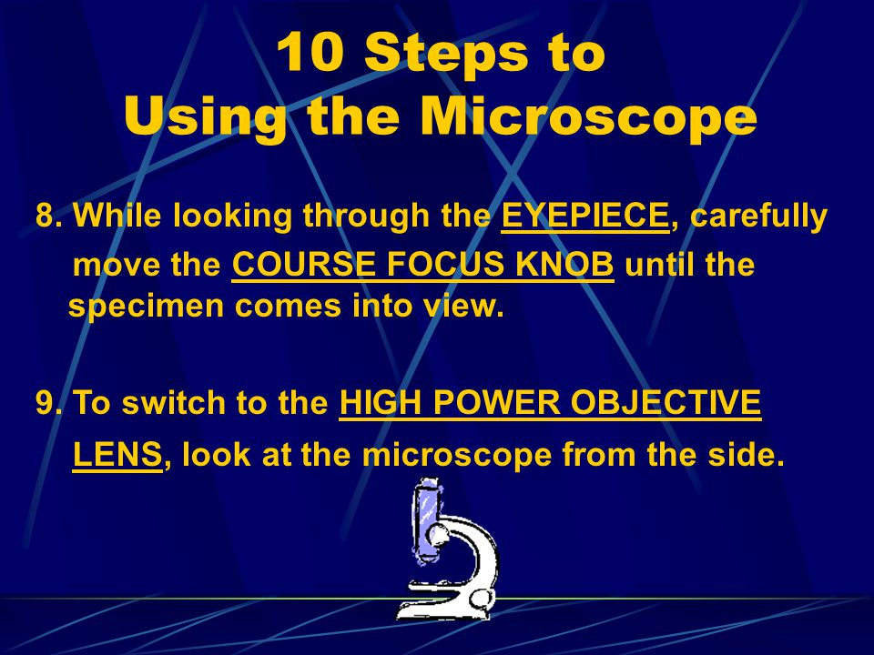10 Steps to Using the Microscope 7. While looking at the STAGE from the side, turn the COURSE FOCUS KNOB to lower the BODY TUBE until the LOW POWER OB
