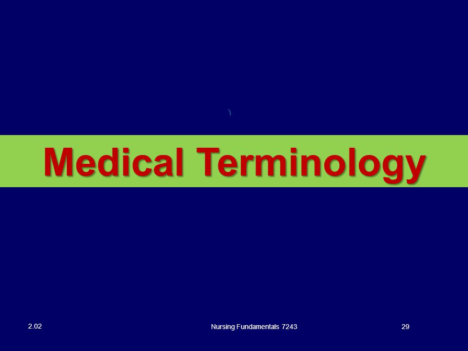 Nursing Fundamentals 724329 2.02 Medical Terminology