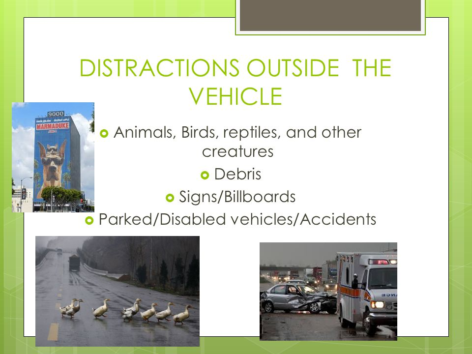 DISTRACTIONS OUTSIDE THE VEHICLE  Animals, Birds, reptiles, and other creatures  Debris  Signs/Billboards  Parked/Disabled vehicles/Accidents