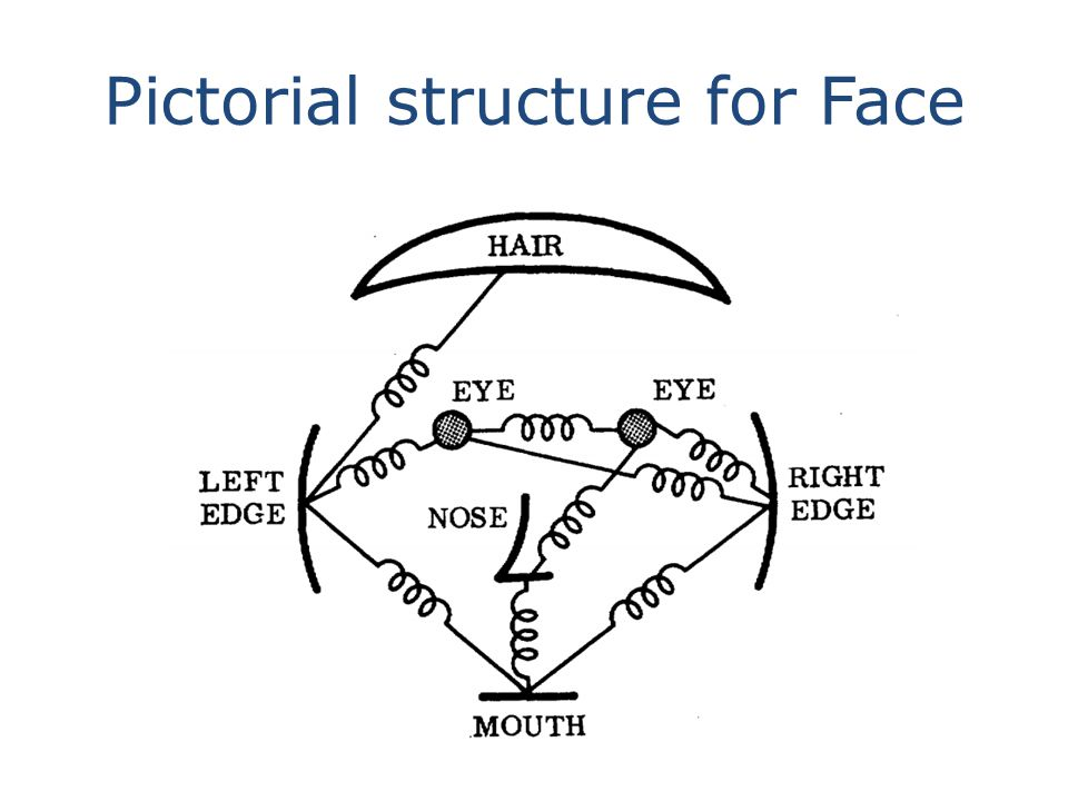 Pictorial structure for Face